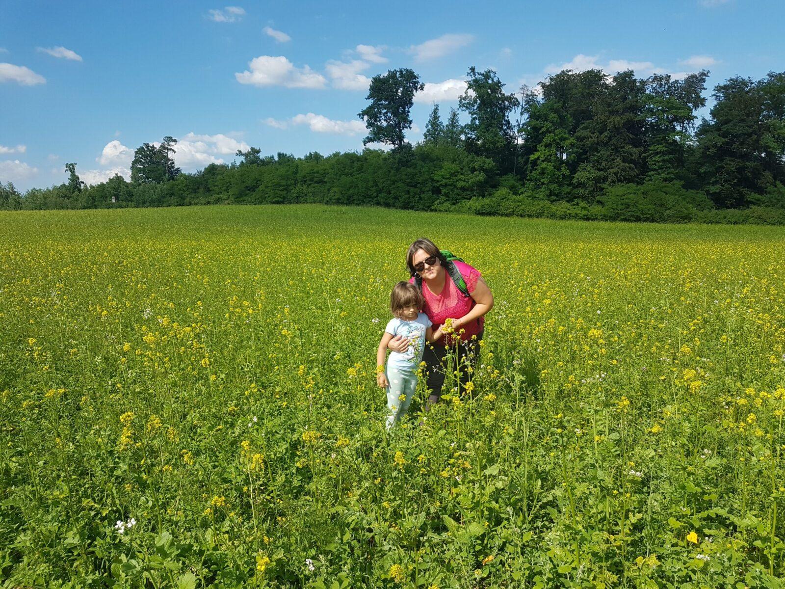 Read more about the article Tură de hiking 21.06.2020