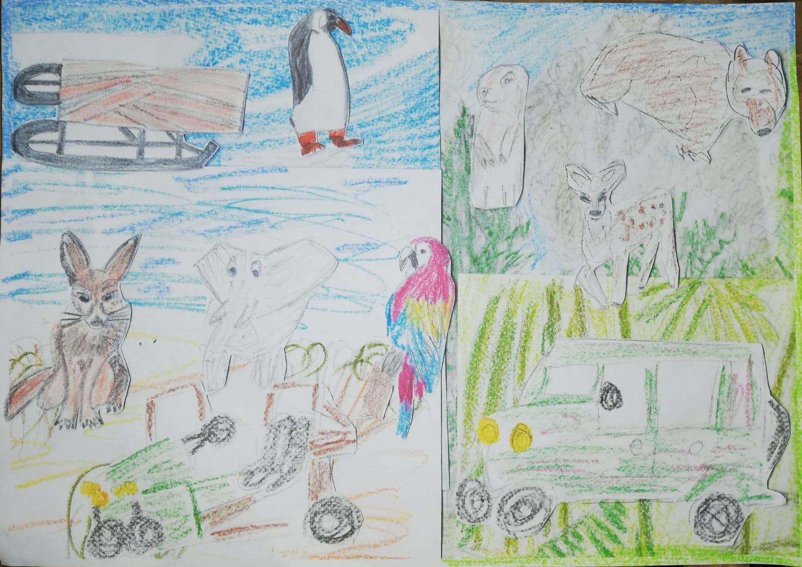 animale din diferite zone biogeografice
