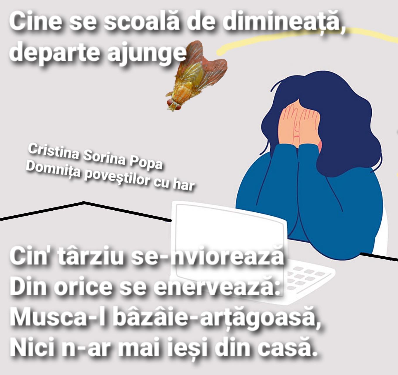 Read more about the article Câte o vorbă de duh
